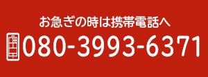 080-3993-6371